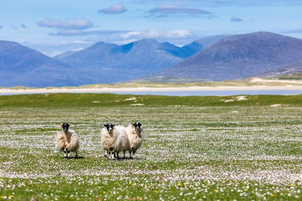 What You Need to Pack When Visiting the Outer Hebrides